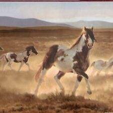 Wild Paint Horse Wallpaper Border - Western Plains - Brewster Borders - A500