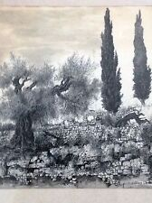 RABBAI YEHUDA WALLERSTEIN, Pen and Ink, Olive and Cypress Trees Landscape
