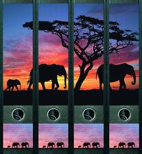 """file art Ordnerrücken 4-teilig """"Africa"""""""