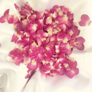 PINK RED WHITE MINI ROSE WEDDING CONFETTI - BEAUTIFUL REAL PETAL BIODEGRADABLE