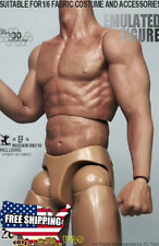 1/6 Scale Muscular Figure Body 3.0 Seamless Arm TTM19 Fit Wolverine Head USA
