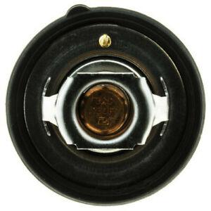 Engine Coolant Thermostat-Standard Coolant Thermostat Motorad 726-180