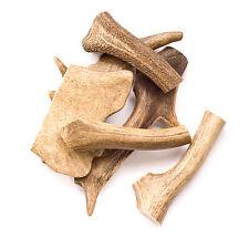 Geweih Hunde | Hirschhorn 1 Stück, 1 x 180-250 Gramm | natürlicher Kauknochen