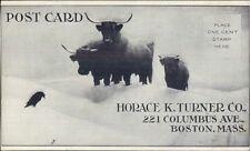 Boston MA Horace K. Turner Co 221 Columbus Ave Adv c1905 Postcard