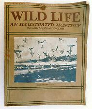 Wild Life vintage nature magazine Douglas English Dec 1914 bird animal photos