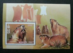 *FREE SHIP Mongolia Fauna 2000 Wildlife Animals (miniature sheet) MNH