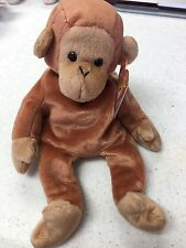 TY Beanie Baby Collection - Bongo