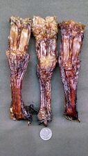 3 Genuine Bison Buffalo Leg Tendons Sinew Dog Chews