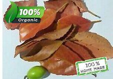 Elaeocarpus Serratus Ceylon Olive Veralu Leaves Anti-dandruff & Hair protection