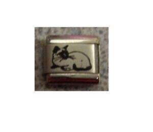 9mm Italian Charm  L4 Oriental Siamese Cat Fits Classic Size Bracelet