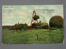 1915 Postcard Farming Stacking Alfalfa Great Antique Farming Machinery