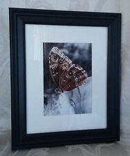 Framed, matted & Signed Digitally Enhanced Photo Art - Butterfly - Wendy Ross