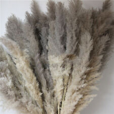 Natural Dried Flower Gray Reed Grass Bunch Bouquet DIY Wedding Party Home Decor