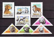 HUNGARY - 1956. Hungarian Dogs - MNH