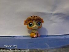 Littlest Pet Shop Cinnamon and Mud Brown and Creme Guinea Pig #2148