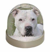 American Staffordshire Bull Terrier Dog Photo Snow Globe Waterball St, AD-SBT5GL