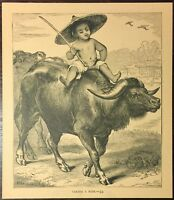 Vintage 1891 Victorian Book Drawing Chinese Boy Riding Water Buffalo