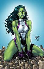 She Hulk The Incredible Hulk 11x17 GLOSSY PRINT In Hard Plastic Sleeve