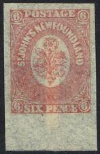NEWFOUNDLAND 1862 FLOWER 6D IMPERF