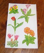 Mrs. Grossman Retired Sticker Sheet ~ Studio Line Blooming Plants