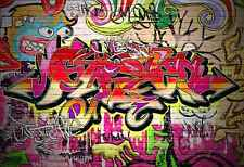 Wall Mural Graffiti Wall Large Repositionable Vinyl Interior Art Decor