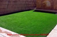 1000 Pcs Pack Green Source Turfgrass Grass Bonsais Evergreen Lawn Bonsai Seeds S