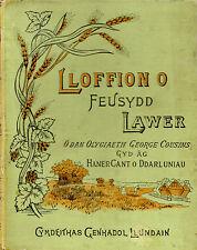 "GEORGE COUSINS - ""LLOFFION O FEUSYDD LAWER"" - HB WELSH MISSIONARY TITLE (1896)"