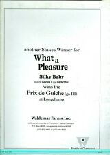 1981 Thoroughbred Record Magazine: Belmont Winners as Sires/Pennsylvania Derby