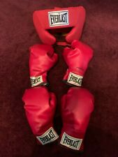 Everlast boxing gloves and headgear for kids