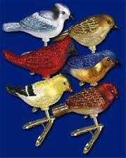 SIX ASSORTED MINIATURE SONGBIRD OLD WORLD CHRISTMAS GLASS BIRD ORNAMENTS 18042