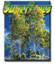 Scenic Express 0214 - Super Trees Value Pack