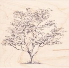 Sketched Dogwood Tree 60-00212 Inkadinkado Rubber Stamp  ~ w/m Free Shipping NEW