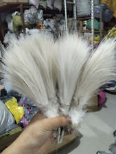 Natural Rare white Heron feathers silk 6-8inch/15-20cm 100 pcs Carnival