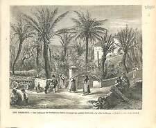 parmureli di Bordighera Domenica delle palme  ROMA ROME ITALIA 1873