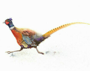 Limited Edition Print of PHEASANT original watercolour by HELEN APRIL ROSE   192