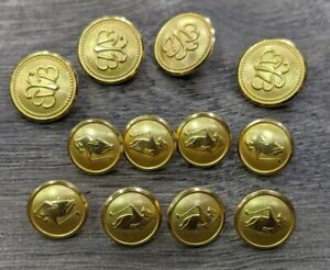 Brooks Brothers brand new Complete set 12 Replacement gold Buttons metal