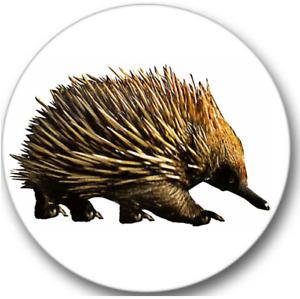 Echidna Sticker Seals No.550, 12 round stickers, australian animals stickers