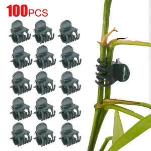 100Pc Plant Support Fix Clips Orchid Stem Vines Grow Support Flowers Tied Branch