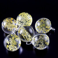 5 pcs Multi-colors Dried Flowers Clear Glass Ball Charms Necklace Pendant Crafts