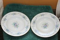 VINTAGE NORITAKE FINE CHINA VIOLETTE SET OF 2 SOUP BOWLS  REPLACEMENT