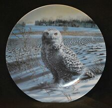 Plate The Bradford Exchange Knowles China - The Snowy Owl collector plate