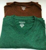 Lot (2) Banana Republic Mens V-Neck T Shirt SZ S Heather Green Orange Copper