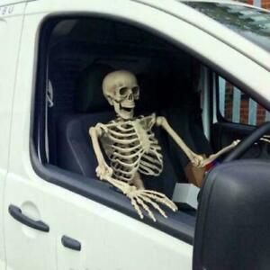 Halloween Poseable Skeleton Life Size Human Skeleton Decoration Prop 90/165cm