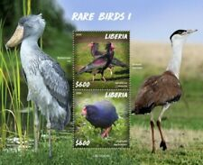 Liberia - 2020 Rare Birds on Stamps - 2 Stamp Souvenir Sheet - LIB200224b