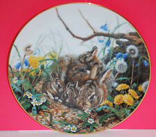 """Bunny Bunch"" 1991 Woodland Creatures Collection Plate by Amy Brackenbury"