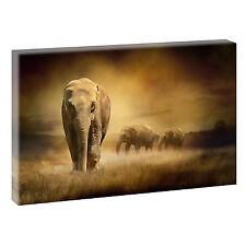 Elefant- Bild auf Leinwand Poster Modern Design Afrika  XXL 120 cm*80 cm 309