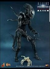AVP Requiem/Alien Warrior w Face Hugger 1/6 scale Hot Toys Sideshow Collectibles