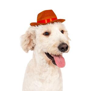 Midlee Cowboy Hat Dog Headband Costume- Large