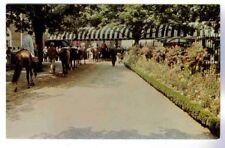 BELMONT PARK'S BEAUTIFUL PADDOCK AREA FULL OF FLOWERS, HORSE RACING POSTCARD
