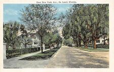 A85/ Deland Florida Fl Postcard c1915 East New York Avenue Homes 2